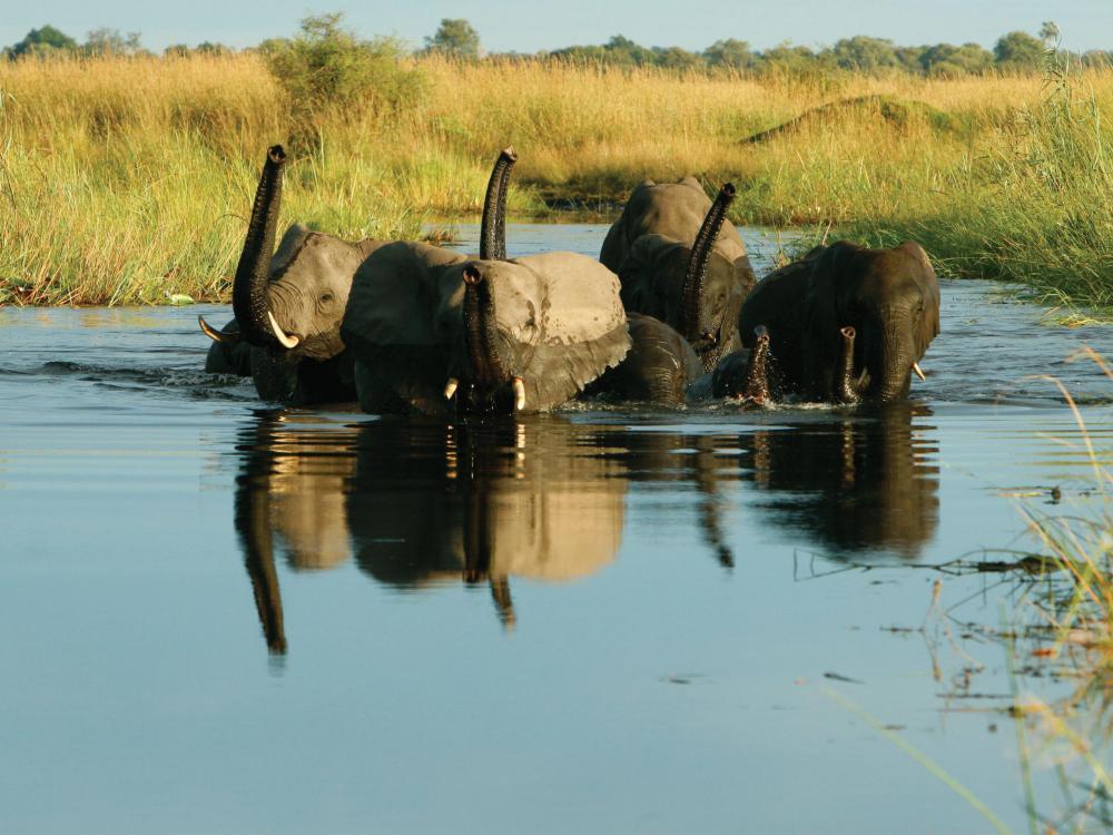 Kuva: Botswana Tourism
