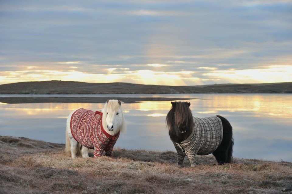 Kuva: Visit Scotland