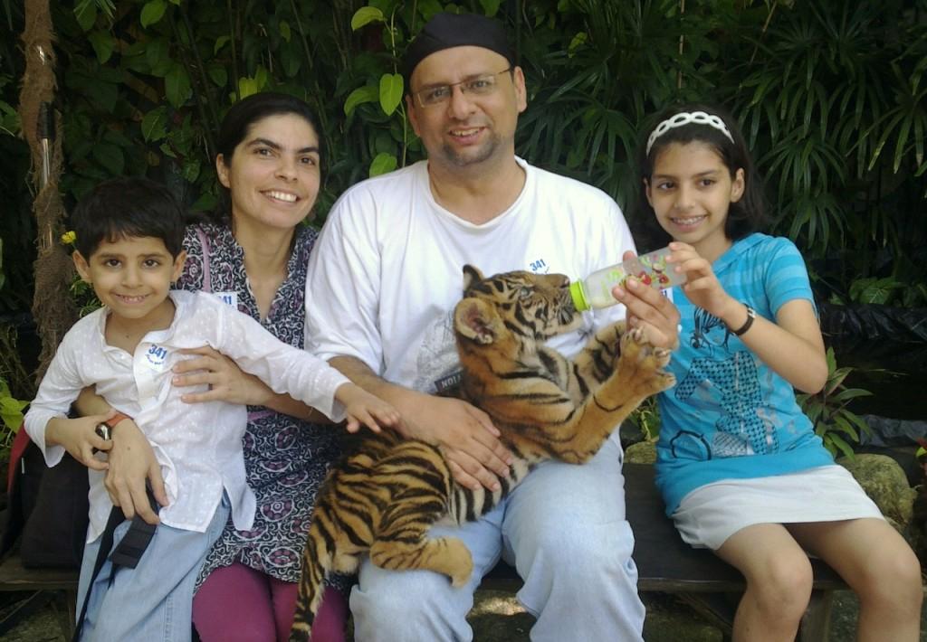 tiger-141433_1280