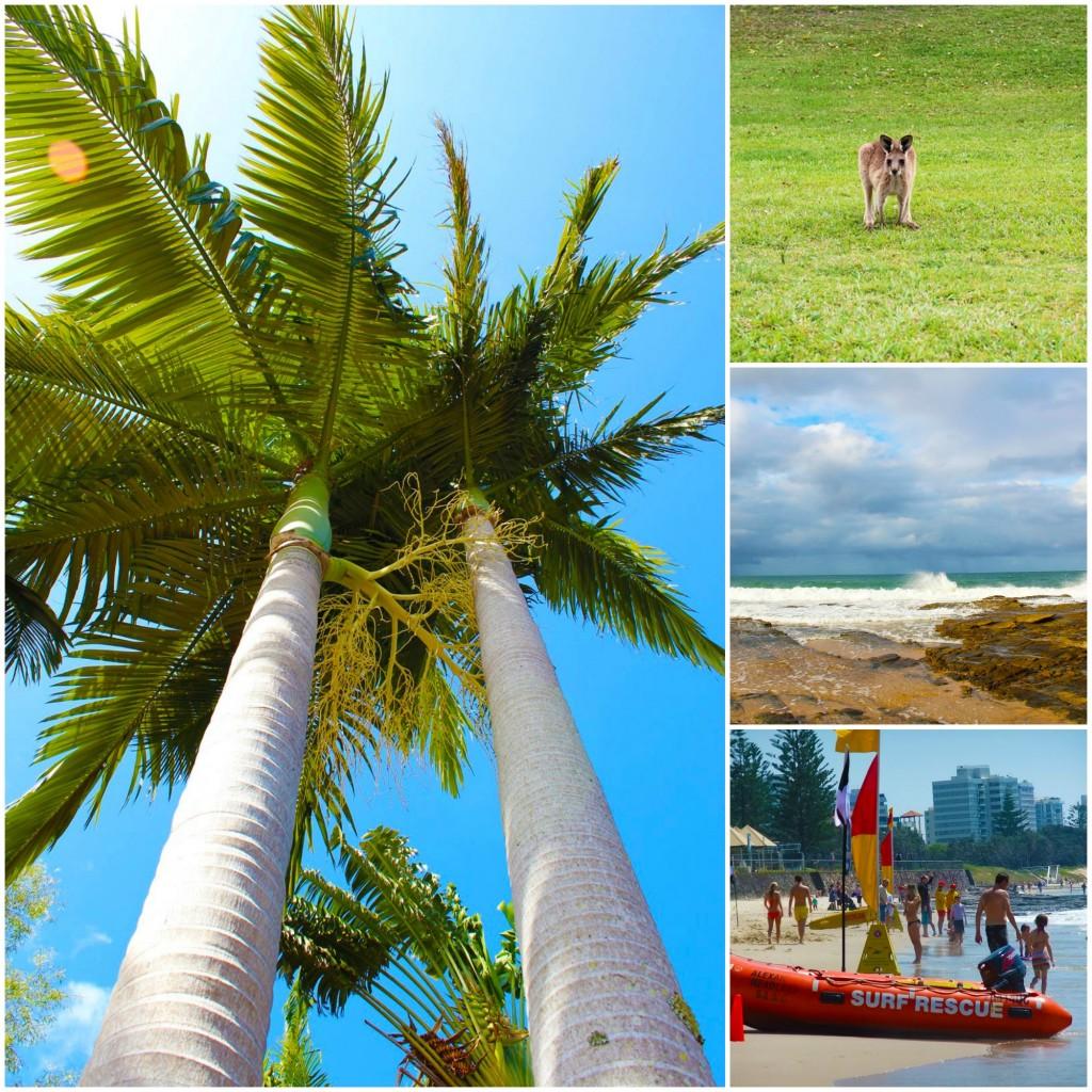Kotikaupunki #4: Sunshine Coast, Australia