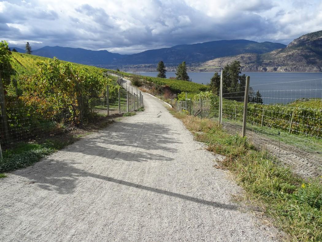 BC winery cycle