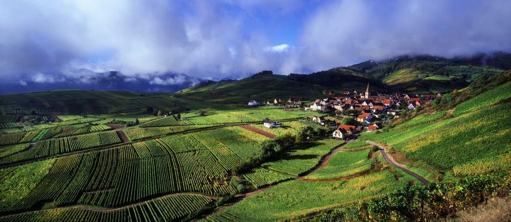 Alsace crta_zvardon