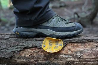 foot-trail_21822102655_o