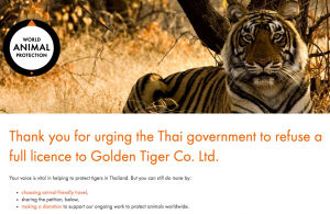 petition against tiger temple Thailand