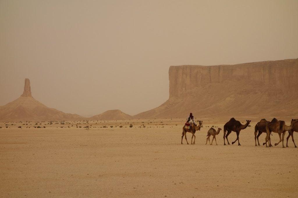 saudi arabian matkailu